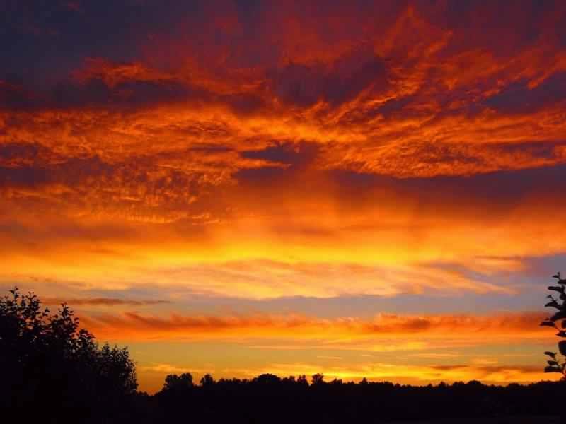 550ml Sunset Orange-2164