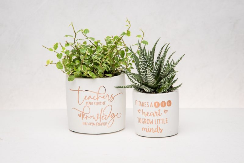 Teacher Appreciation Gift with plant-2694