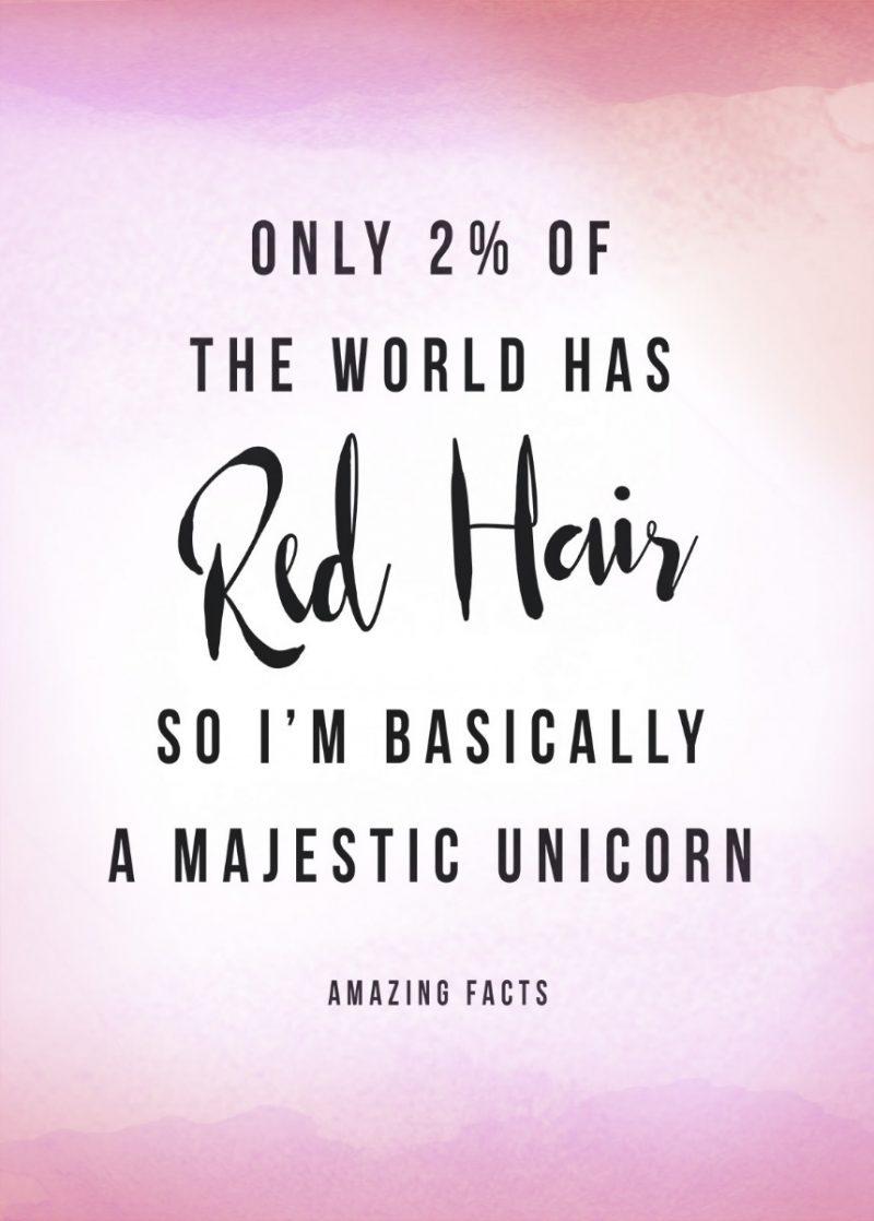 I'm A Majestic Unicorn-2545