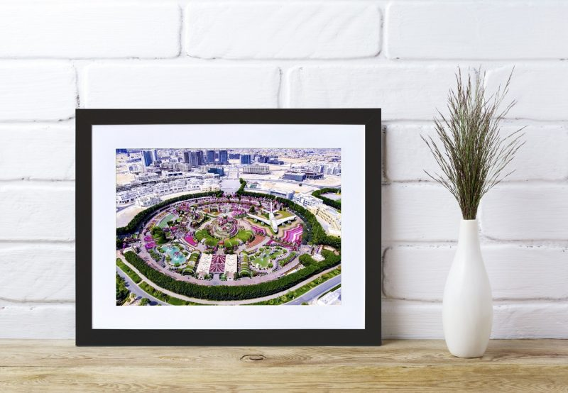 Miracle gardens framed photograph-4257