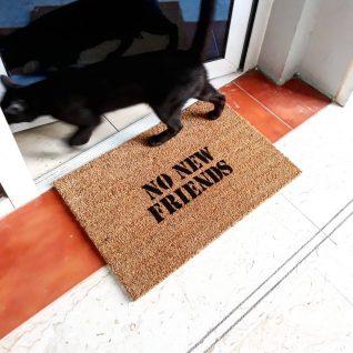 Doormat- No new friends-0